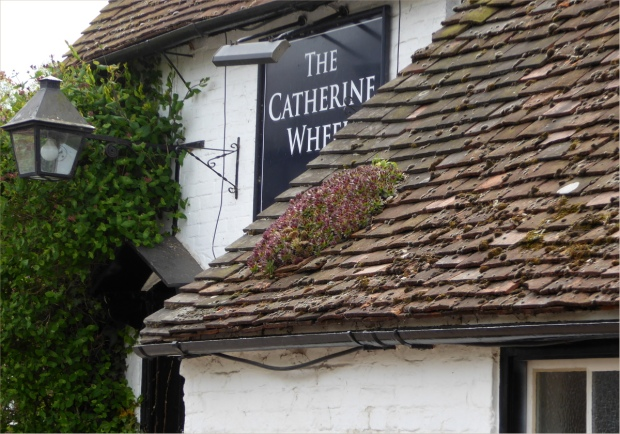 mossy roof of Catherine Wheel