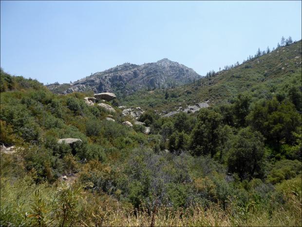 Pinyon-juniper woodland with rocky outcrop