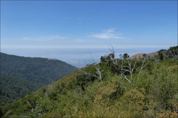 View from the summit of Nacimiento-Fergusson Road